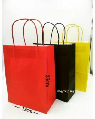 COLOURFUL PAPER BAGS (L) 12PCS